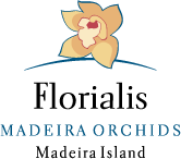 Florialis - Madeira Orchids